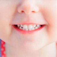 Факты о молочных зубах