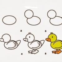 Как нарисовать утенка