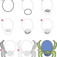 Как нарисовать паука