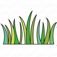 Как нарисовать траву