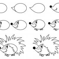 Как нарисовать ежика