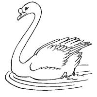 Раскраска Лебедь