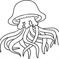 Раскраска Медуза