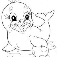 Раскраска Морской Котик
