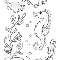 Раскраски Морское дно