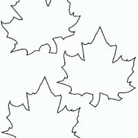 Раскраска листья деревьев