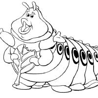 Раскраска Жизнь жуков